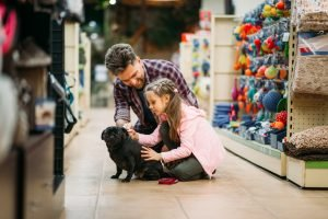 pet store, 3 Qualities of a Great Pet Store